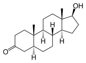 Dihydrotestosterone (DHT)