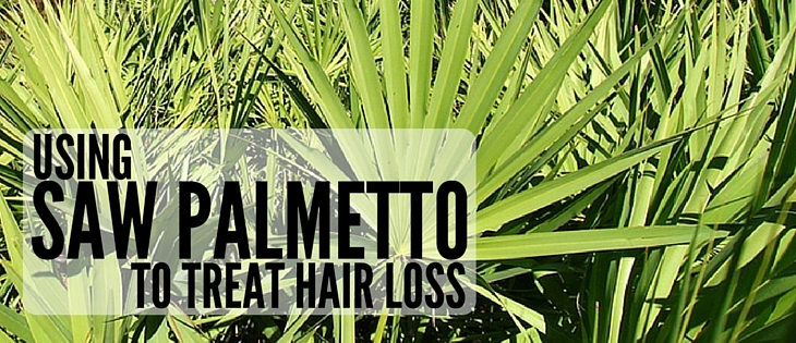 Saw Palmetto for hair loss treatment