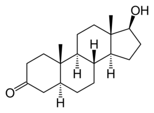 Dihydrotestosteron (DHT)