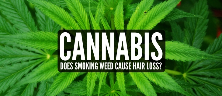 Cannabis hair loss link