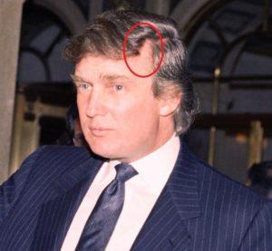 Trump hair 1991
